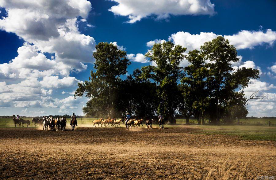 名称: 高桥农庄 所属分类:阿根廷 更新时间:2016-9-2 14:11:13 总张数